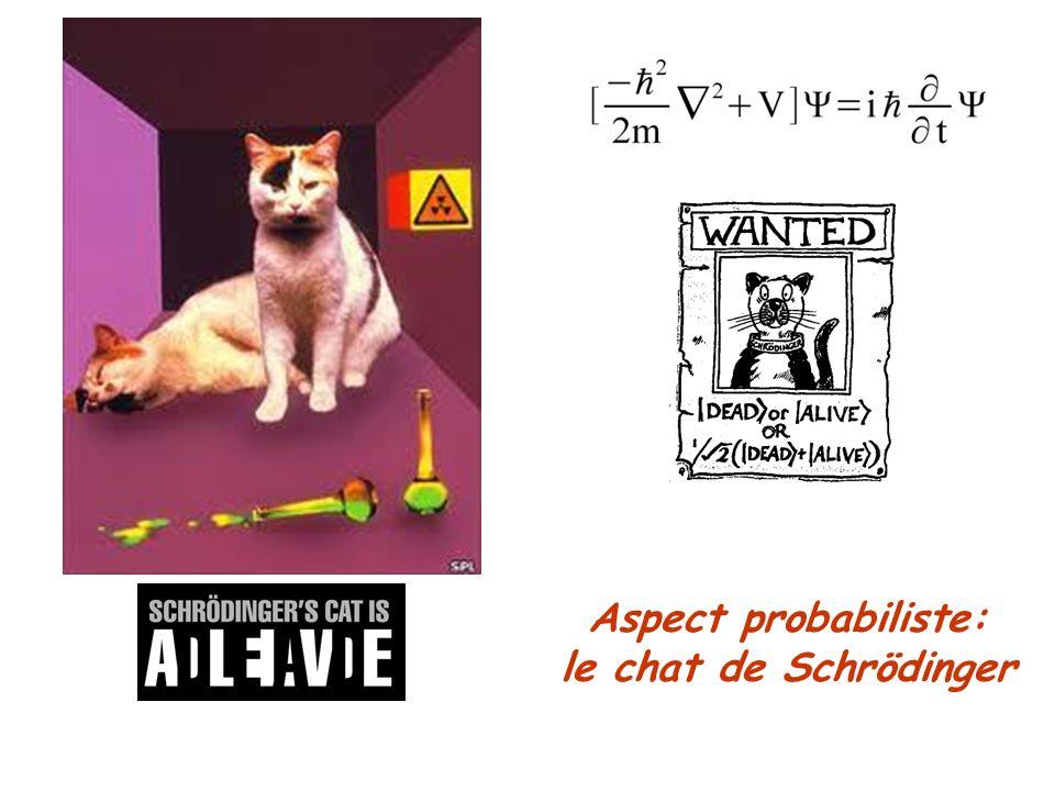 Aspect probabiliste: le chat de Schrödinger