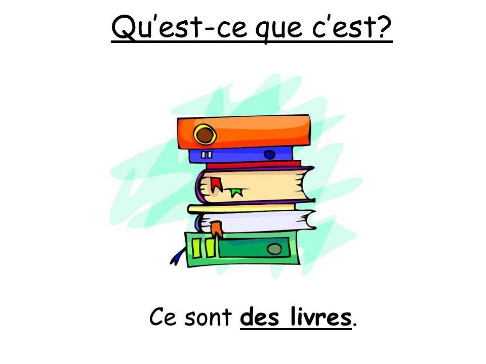 Qu'est-ce que c'est Ce sont des livres.