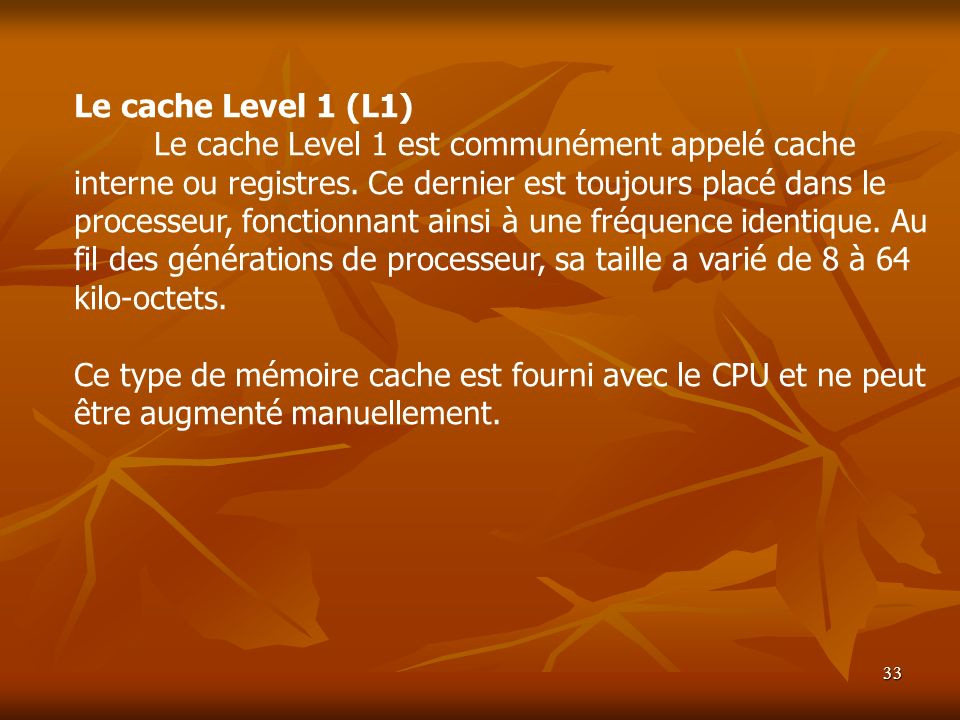 Le cache Level 1 (L1)