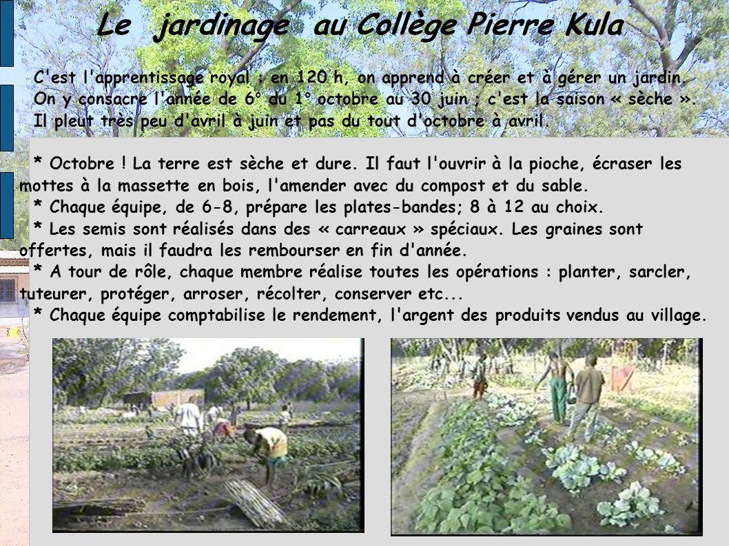 Le jardinage au Collège Pierre Kula