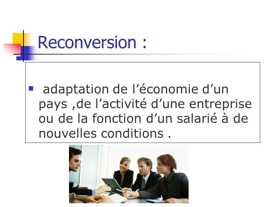 Reconversion : adaptation de l'économie d'un pays ,de l'activité d'une entreprise ou de la fonction d'un salarié à de nouvelles conditions .