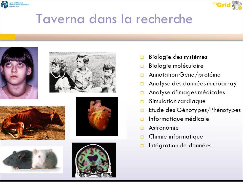 Taverna dans la recherche
