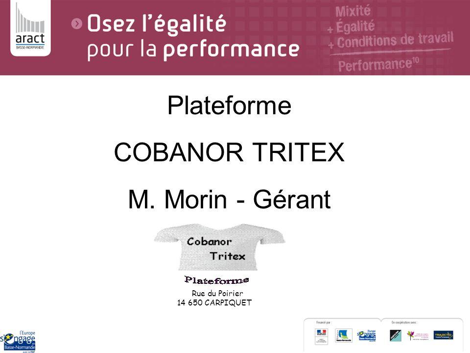 Plateforme COBANOR TRITEX M. Morin - Gérant Rue du Poirier