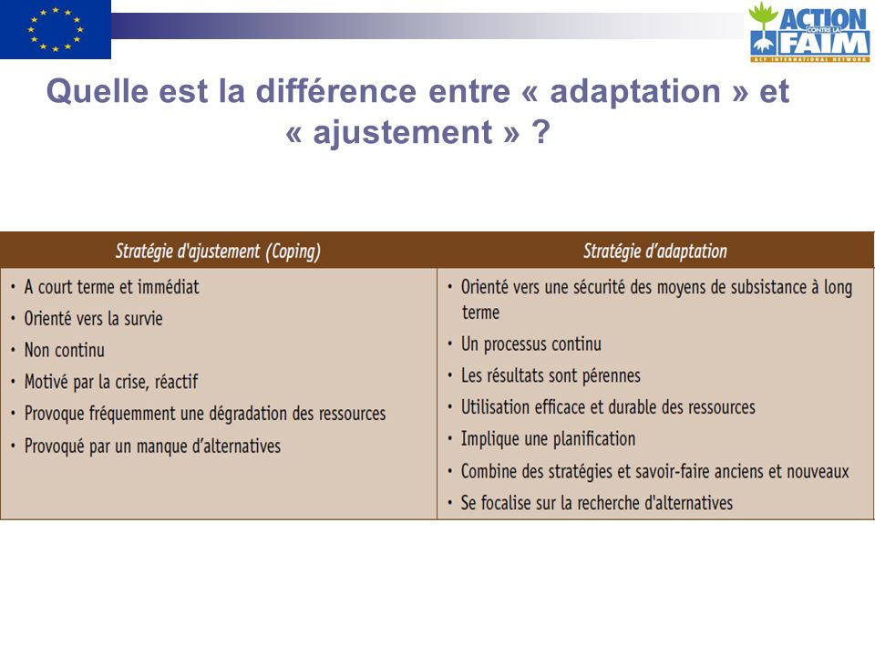Quelle est la différence entre « adaptation » et « ajustement »