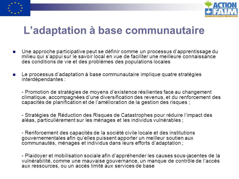 L'adaptation à base communautaire