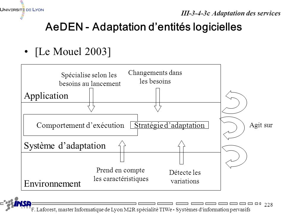 AeDEN - Adaptation d'entités logicielles
