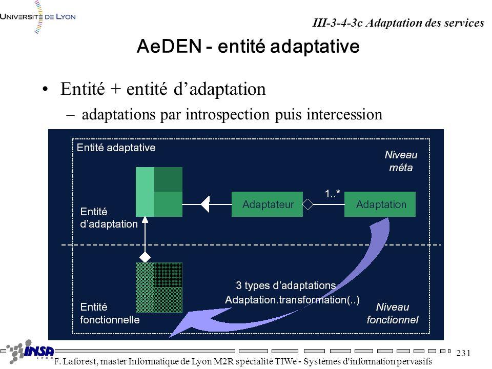 AeDEN - entité adaptative