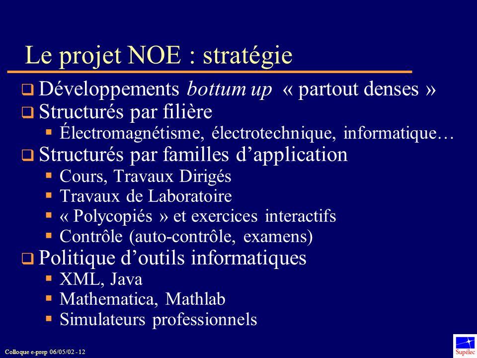 Le projet NOE : stratégie