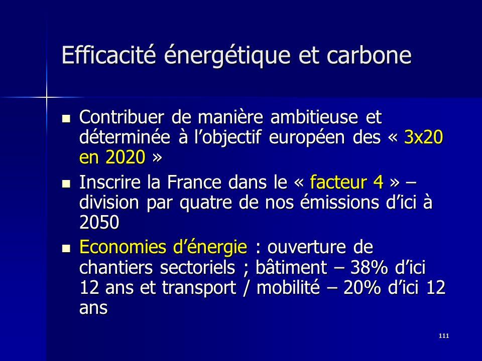 Efficacité énergétique et carbone
