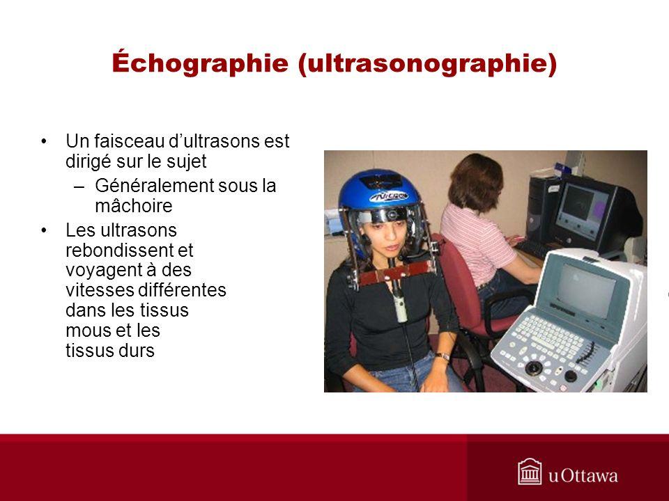 Échographie (ultrasonographie)