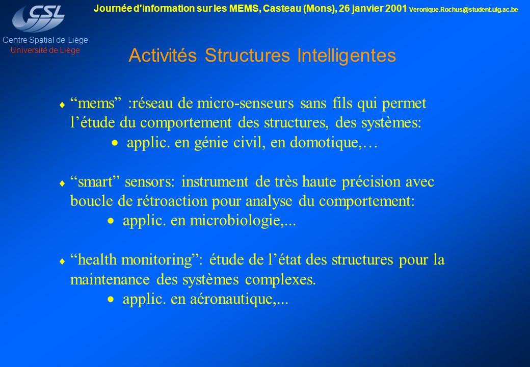 Activités Structures Intelligentes