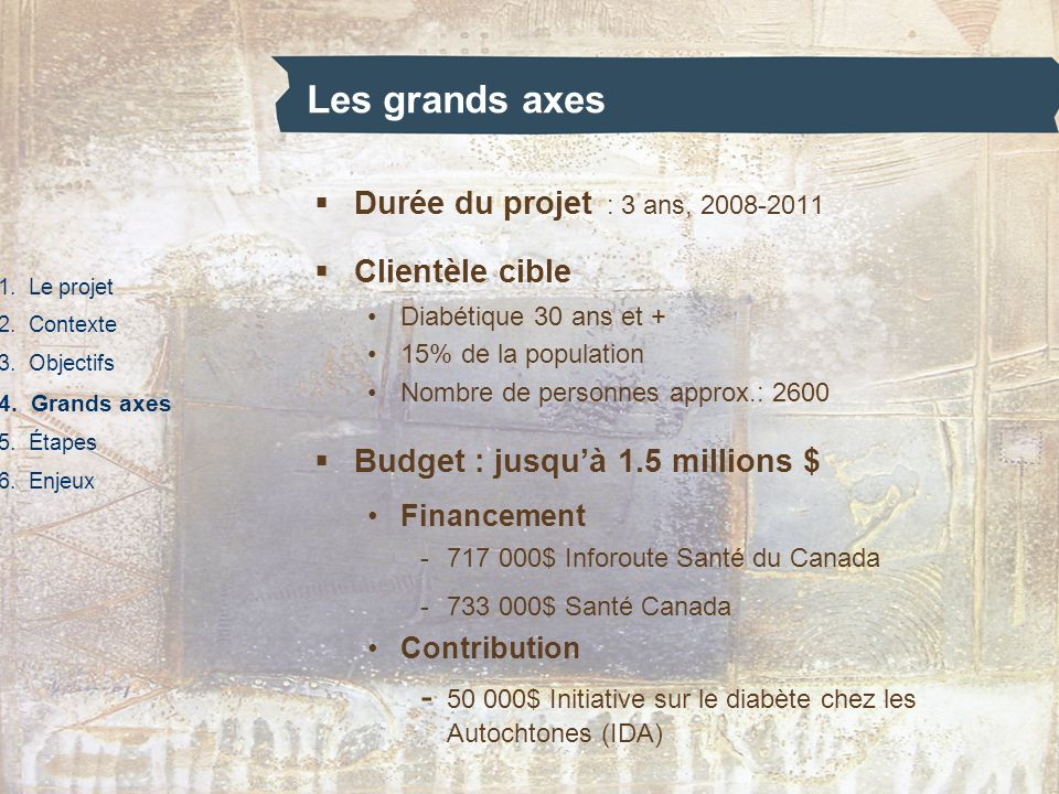 Les grands axes Durée du projet : 3 ans, 2008-2011. Clientèle cible. Diabétique 30 ans et + 15% de la population.