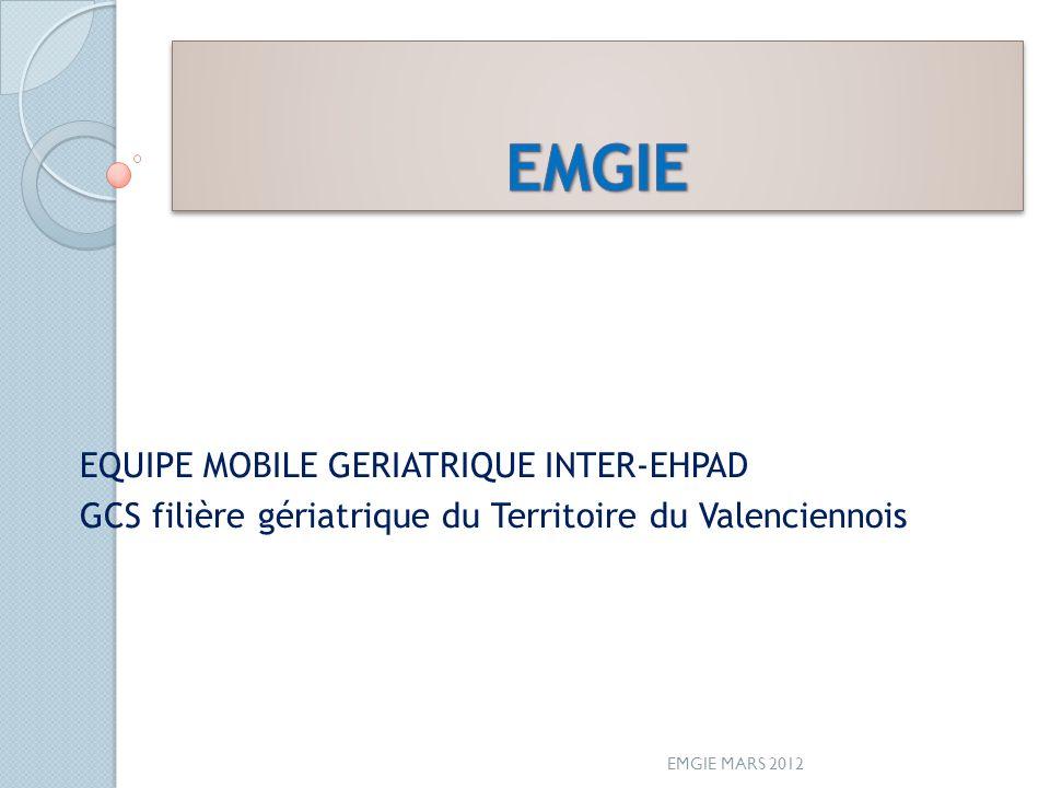 EMGIE EQUIPE MOBILE GERIATRIQUE INTER-EHPAD