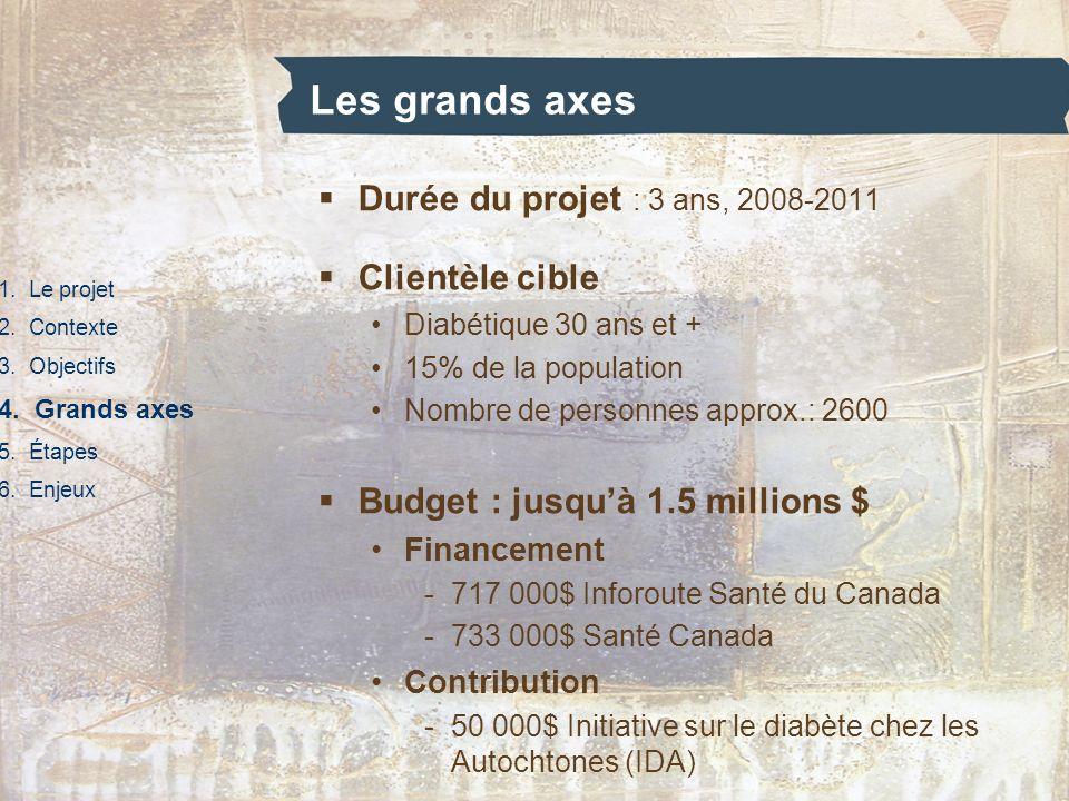 Les grands axes Durée du projet : 3 ans, 2008-2011 Clientèle cible