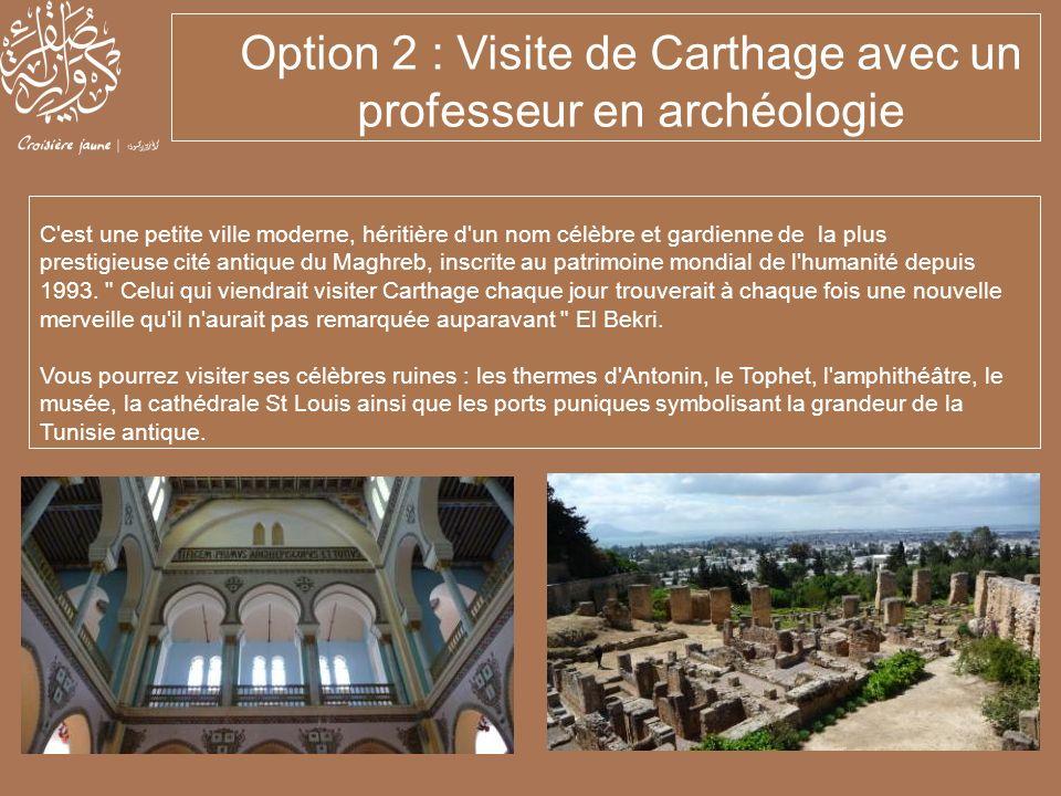 Option 2 : Visite de Carthage avec un professeur en archéologie