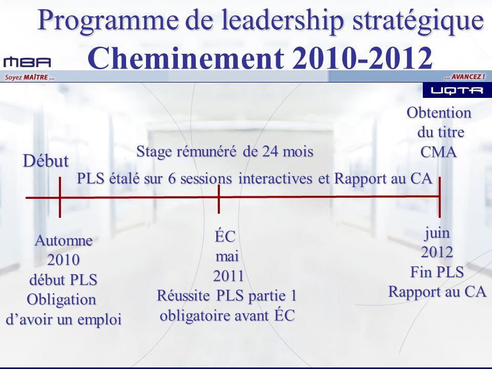 Programme de leadership stratégique