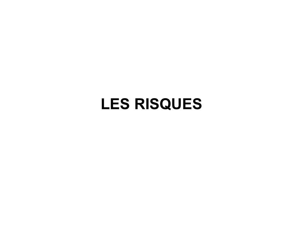LES RISQUES