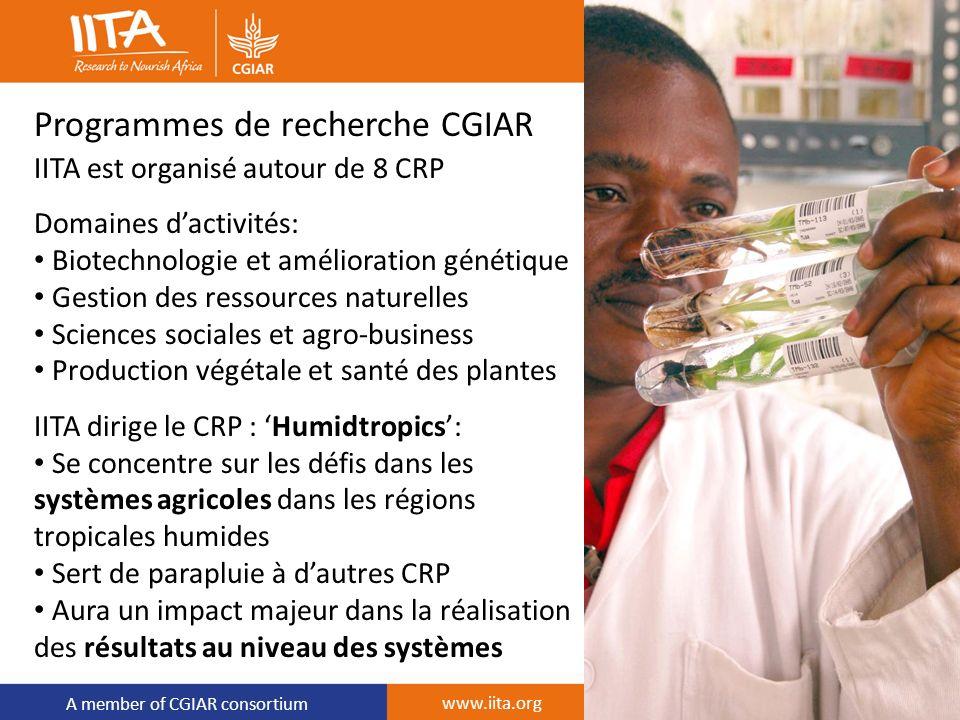 A member of CGIAR consortium