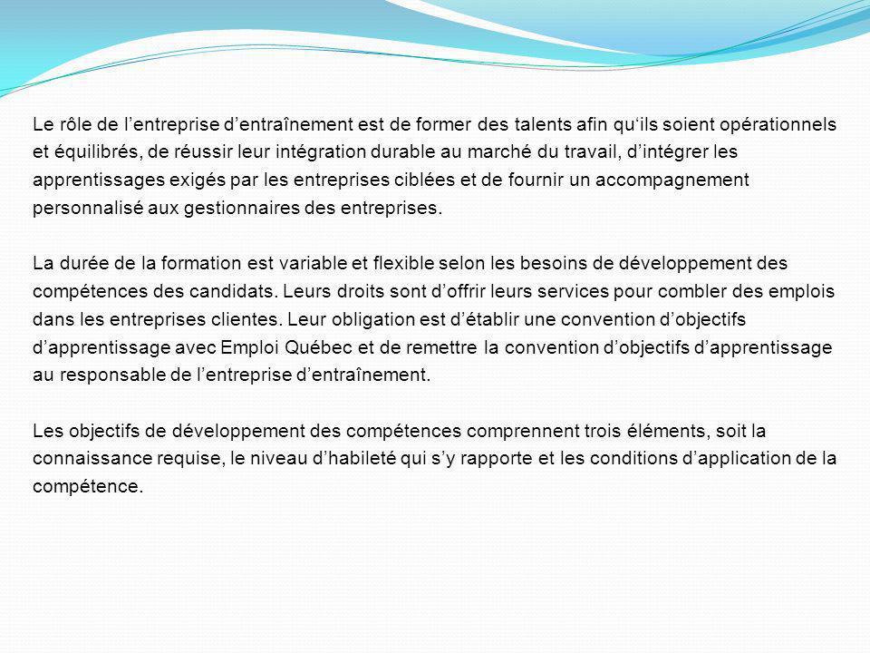 Le rôle de l'entreprise d'entraînement est de former des talents afin qu'ils soient opérationnels et équilibrés, de réussir leur intégration durable au marché du travail, d'intégrer les apprentissages exigés par les entreprises ciblées et de fournir un accompagnement personnalisé aux gestionnaires des entreprises.