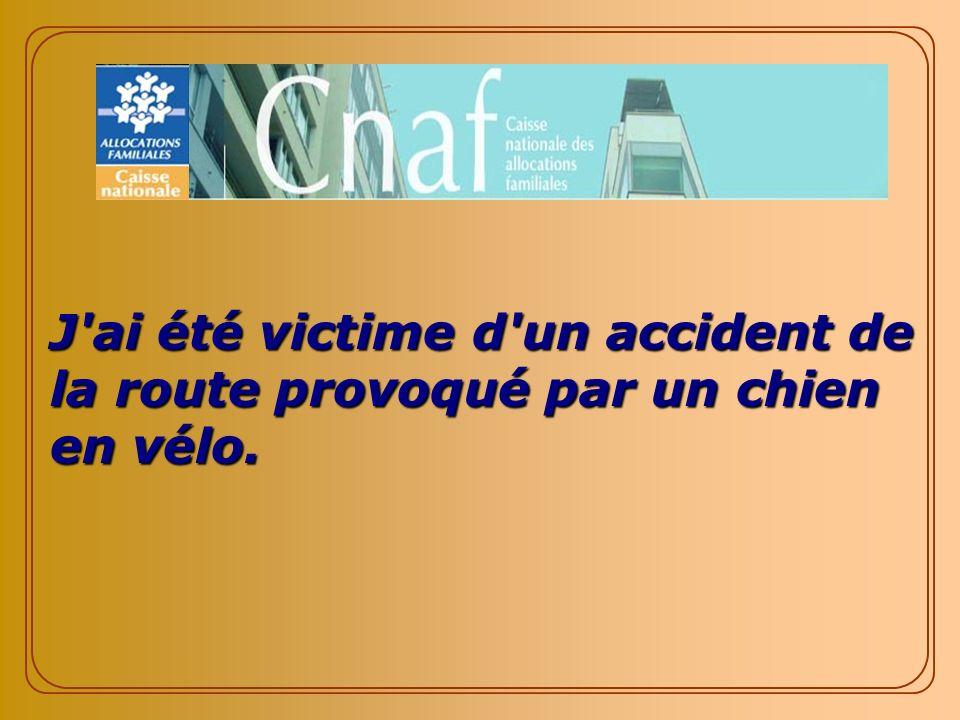 J ai été victime d un accident de la route provoqué par un chien en vélo.