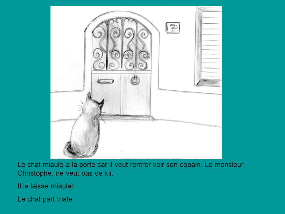Le chat miaule à la porte car il veut rentrer voir son copain