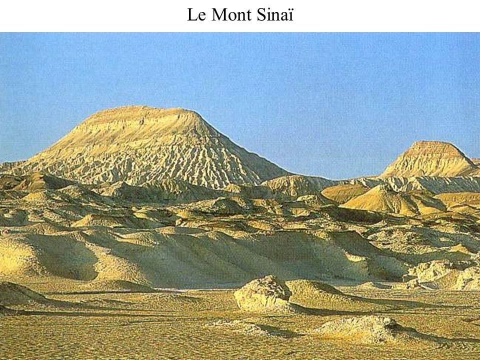 Le Mont Sinaï