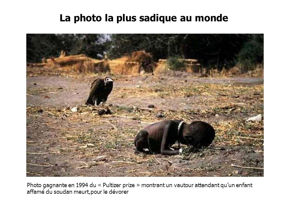 La photo la plus sadique au monde