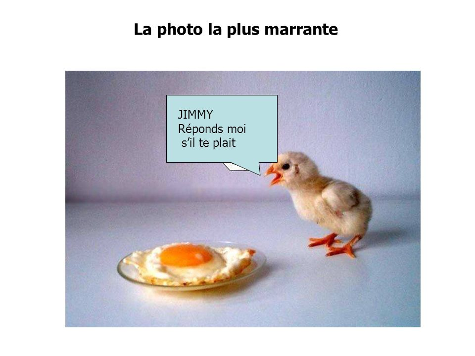 La photo la plus marrante