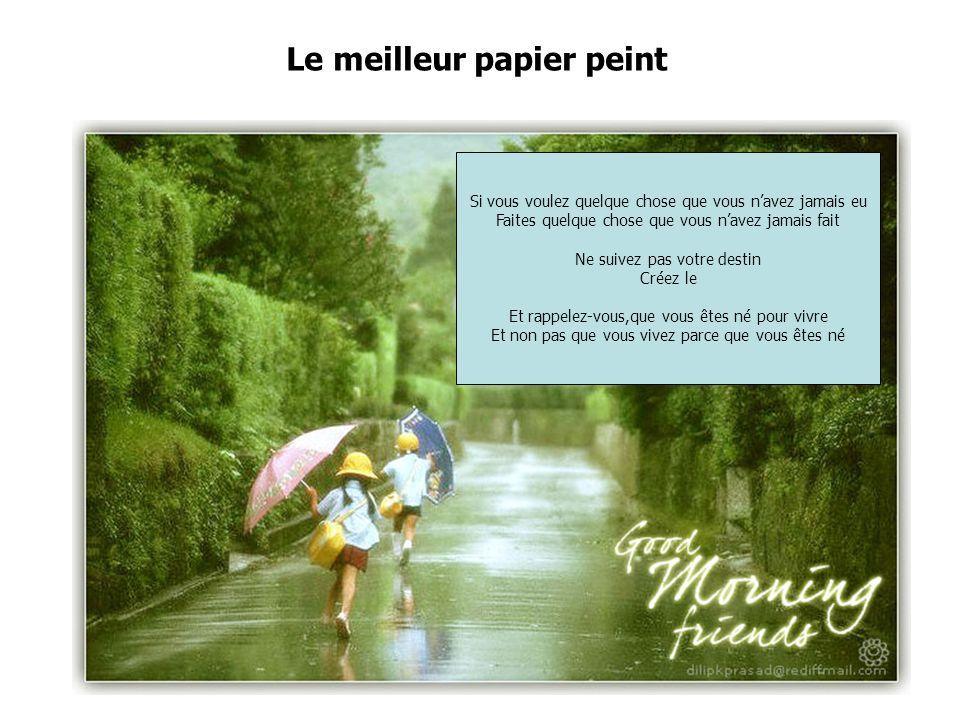 Le meilleur papier peint