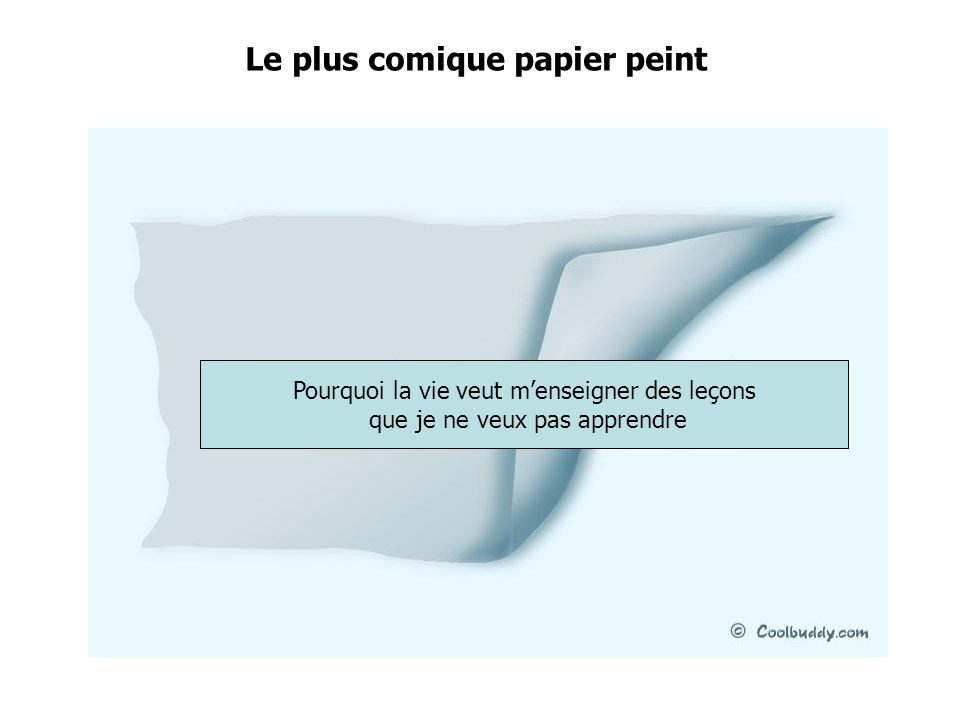 Le plus comique papier peint