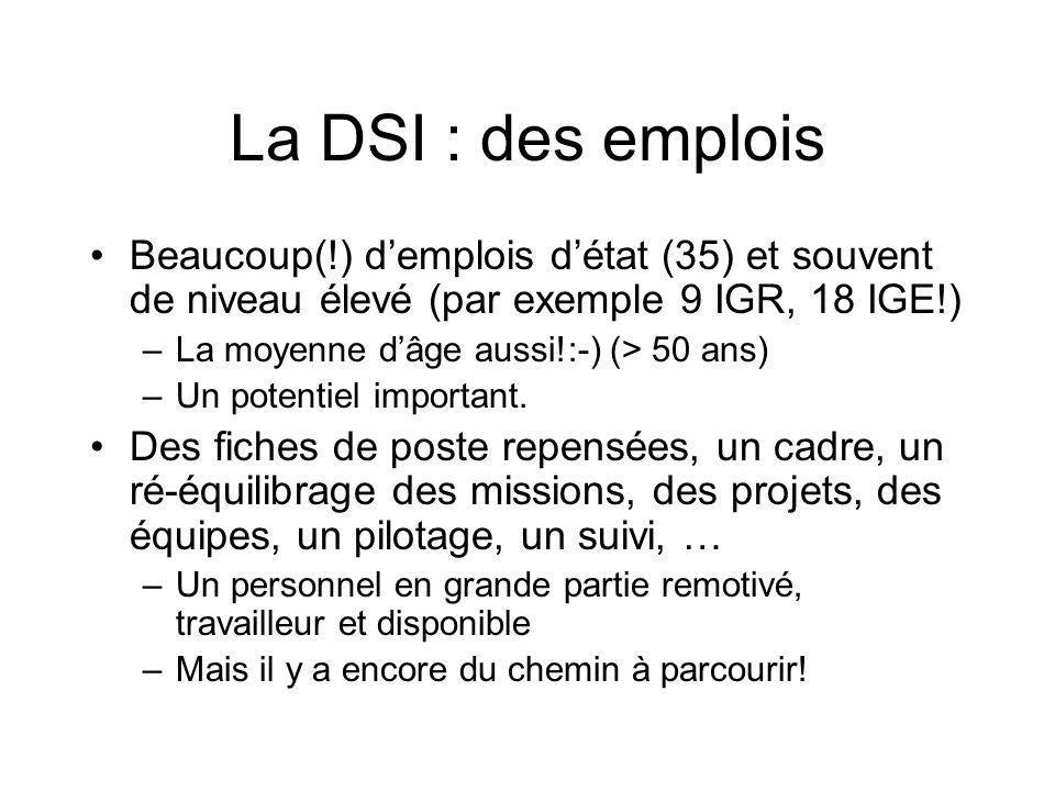 La DSI : des emplois Beaucoup(!) d'emplois d'état (35) et souvent de niveau élevé (par exemple 9 IGR, 18 IGE!)
