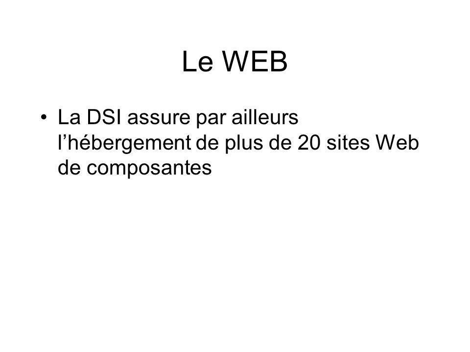 Le WEB La DSI assure par ailleurs l'hébergement de plus de 20 sites Web de composantes