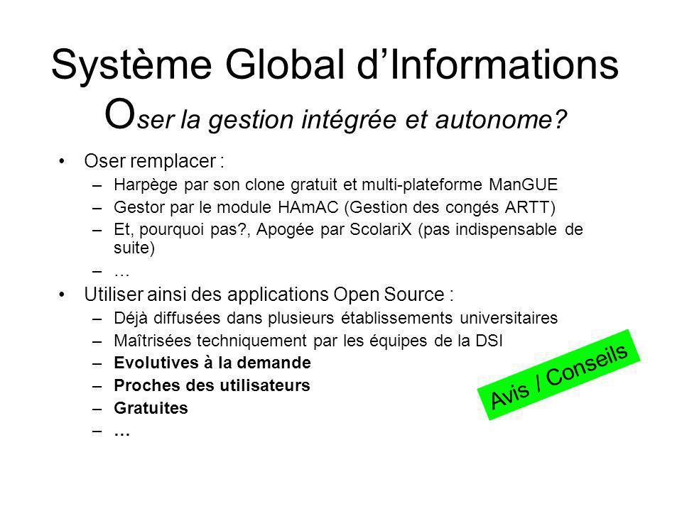 Système Global d'Informations Oser la gestion intégrée et autonome