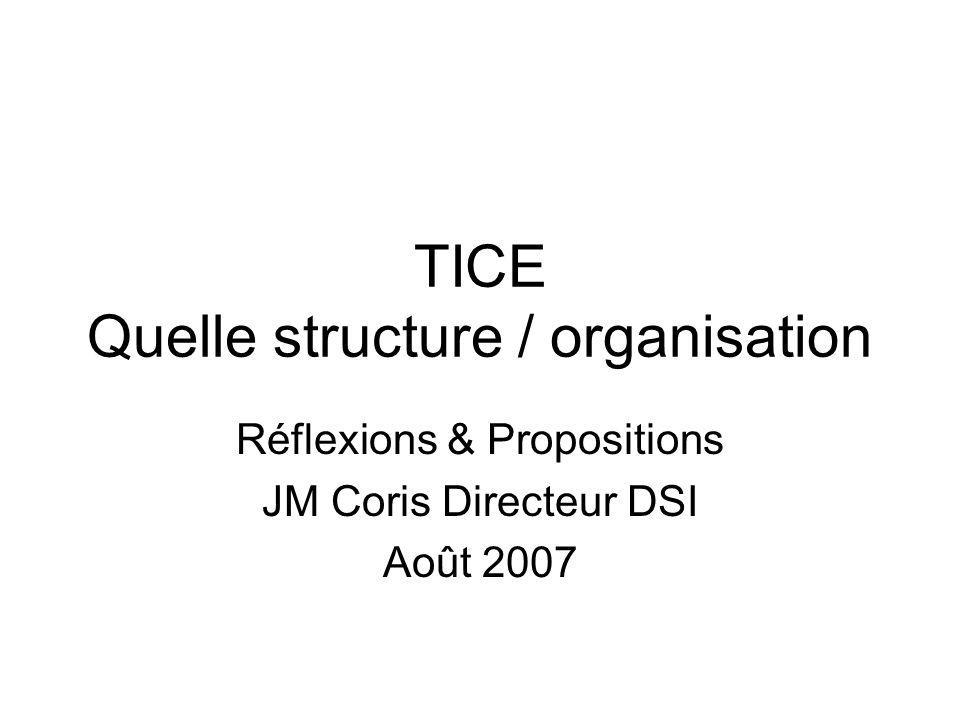 TICE Quelle structure / organisation