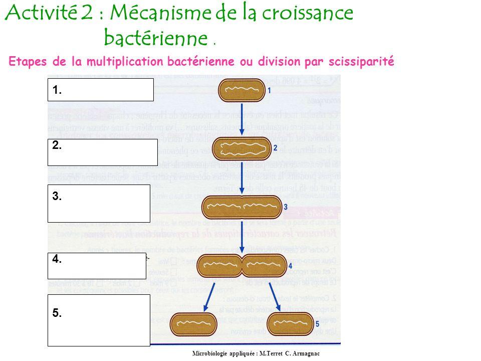 Activité 2 : Mécanisme de la croissance bactérienne .