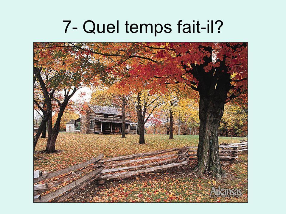 7- Quel temps fait-il