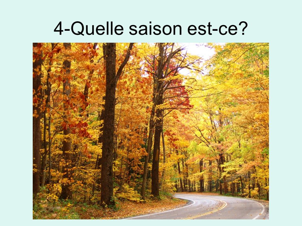 4-Quelle saison est-ce