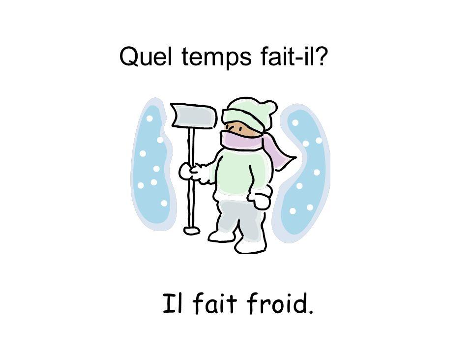Quel temps fait-il Il fait froid.