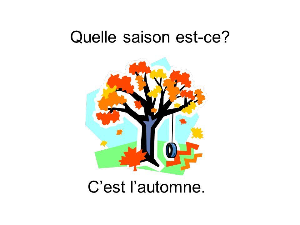 Quelle saison est-ce C'est l'automne.