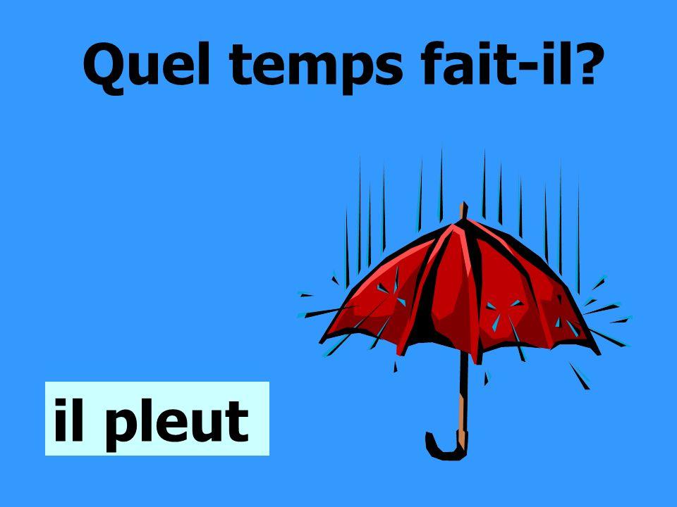 Quel temps fait-il il pleut