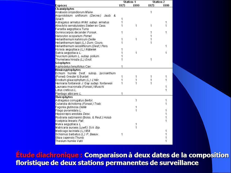 Étude diachronique : Comparaison à deux dates de la composition floristique de deux stations permanentes de surveillance