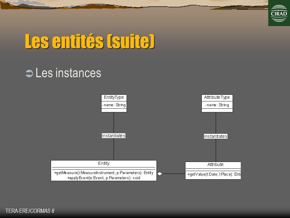 Les entités (suite) Les instances TERA-ERE/CORMAS II