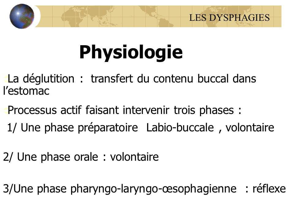LES DYSPHAGIES Physiologie. La déglutition : transfert du contenu buccal dans l'estomac. Processus actif faisant intervenir trois phases :
