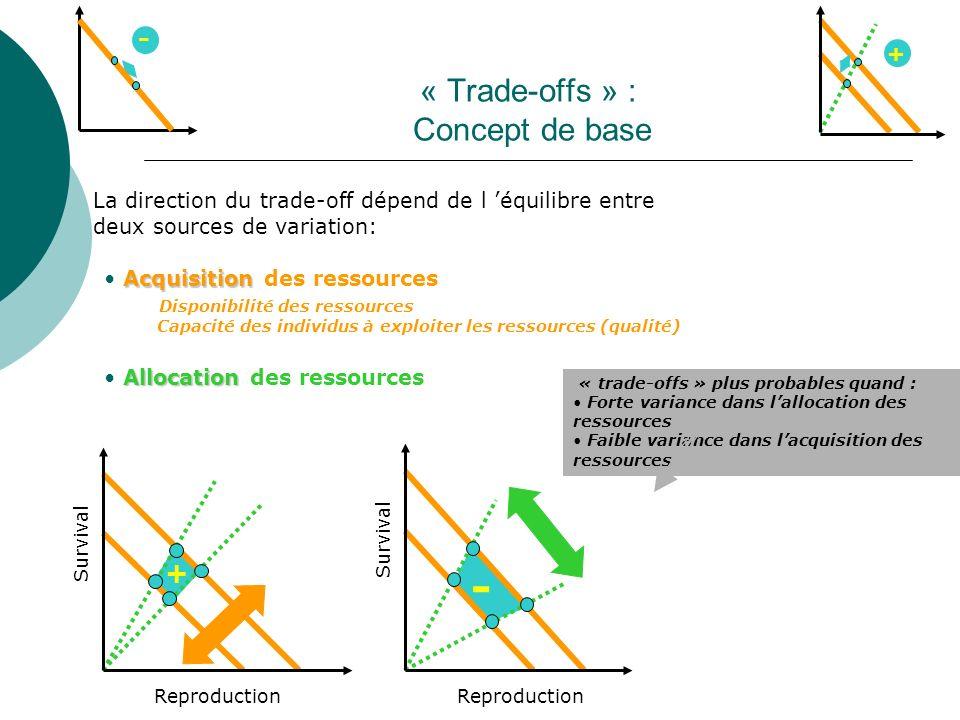 « Trade-offs » : Concept de base