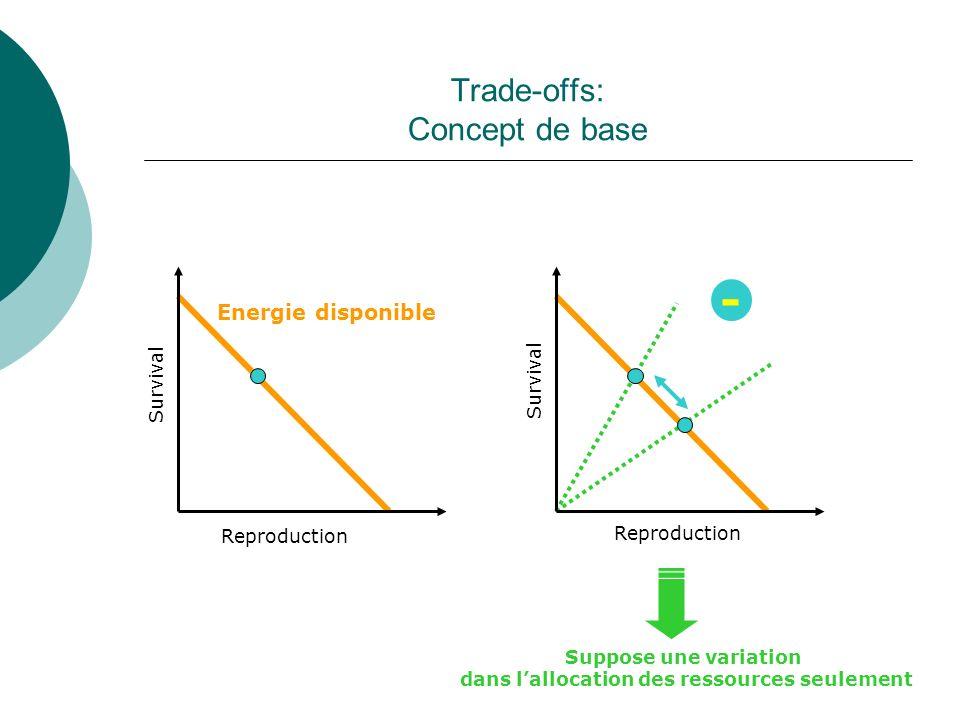 Trade-offs: Concept de base