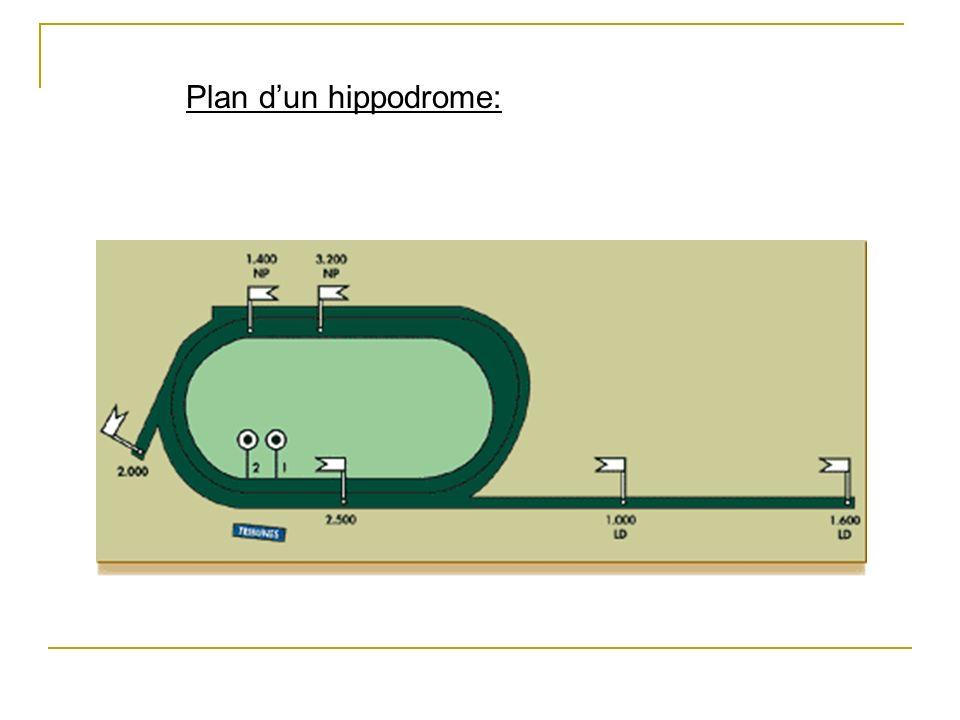 Plan d'un hippodrome: