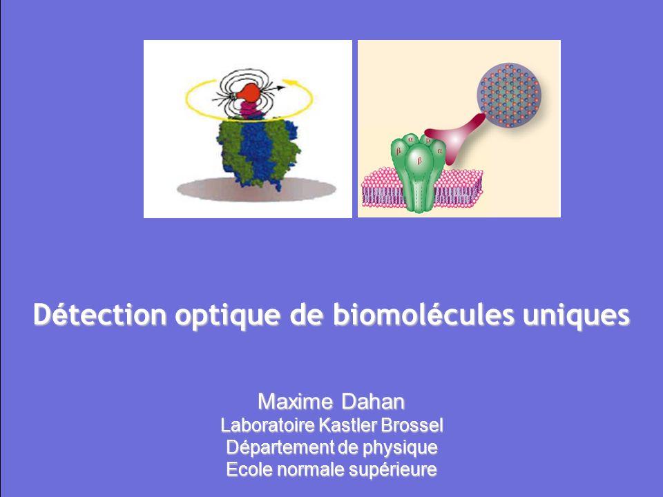 Détection optique de biomolécules uniques