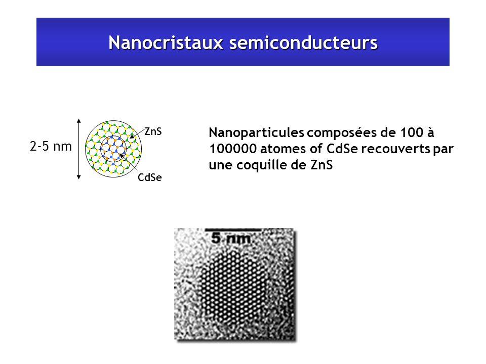Nanocristaux semiconducteurs