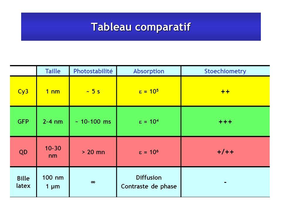 Tableau comparatif ++ +++ +/++ ∞ - Taille Photostabilité Absorption
