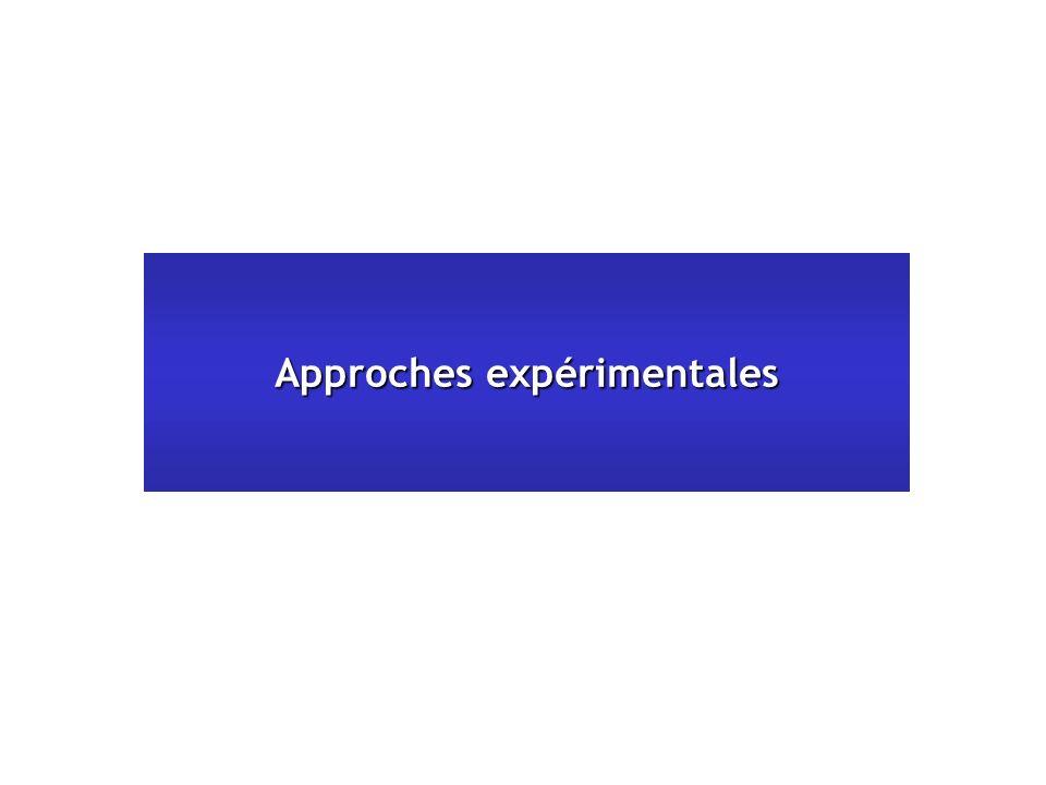 Approches expérimentales